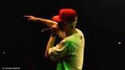 Koncert Hemp Gru (7 lipca2013)